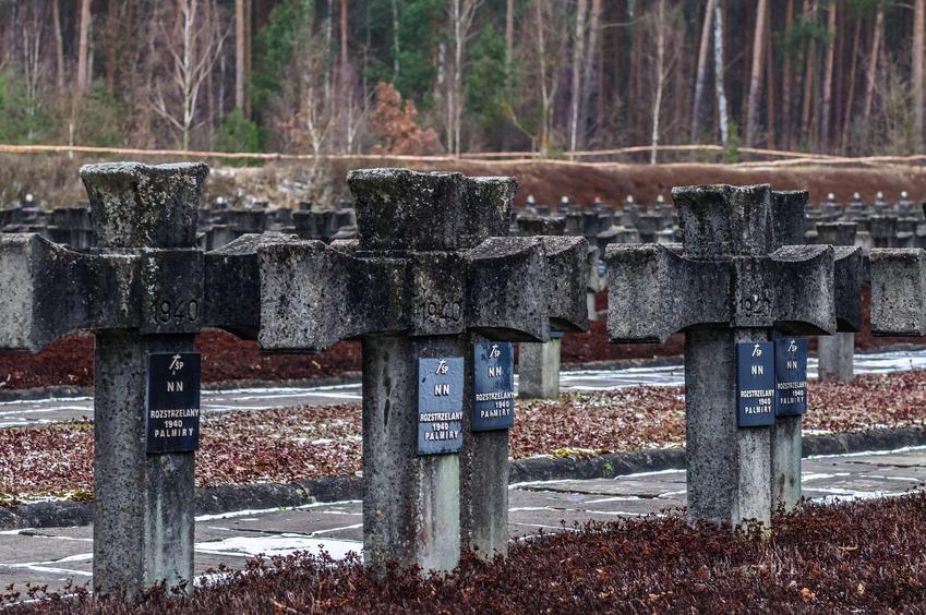 Zdjęcie z cmentarza w Palmirach w Puszczy Kampinoskiej