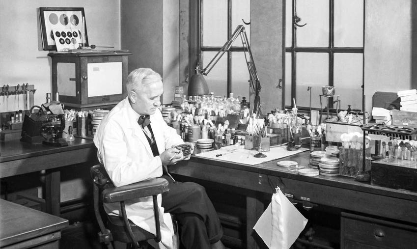 Alexander Fleming, wynalazca penicyliny, a także życiorys wynalazcy, działalność naukowa, osiągnięcia