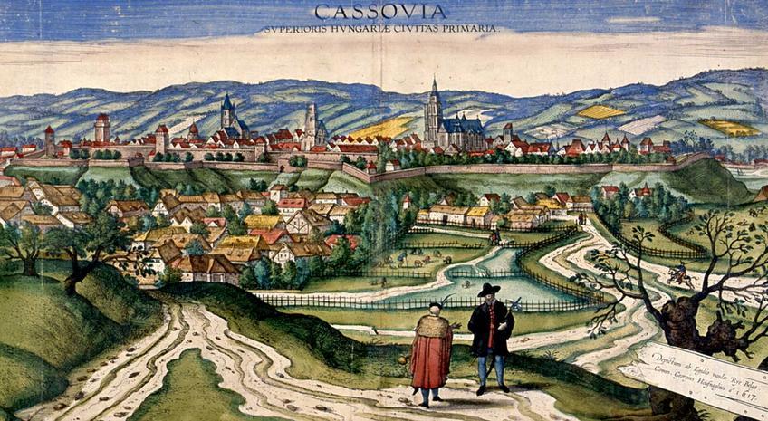 Wojna domowa pomiędzy Jagiellonami o tron Węgier krok po kroku, czyli daty, wydarzenia, strony konfliktu, przebieg, cel oraz skutki