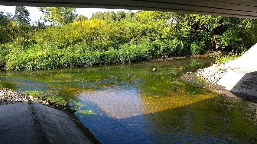 Zanieczyszczenie rzek w PRLu, czyli problem zanieczyszczeń w czasach powojennych, najważniejsze informacje