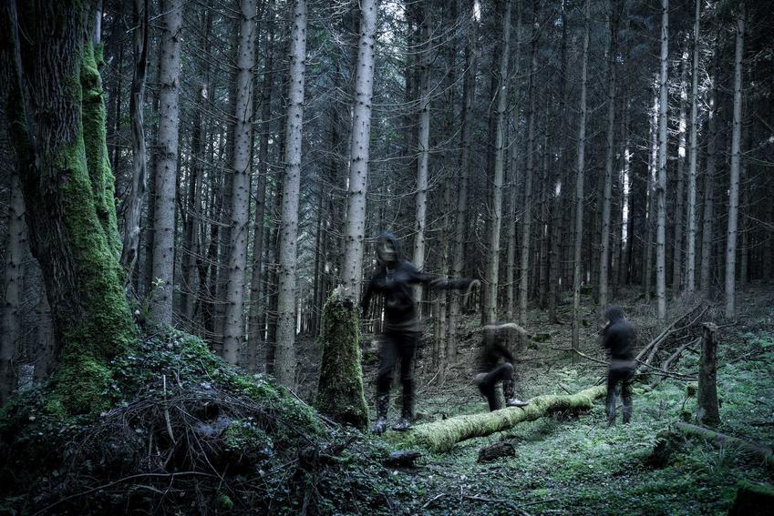 Las w Witkowicach, czyli polski Blair Witch Project, oraz legenda lasu w Witkowicach oraz fakty i potwierdzone zbrodnie