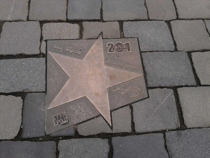 Elżbieta Dmoch i jej życiorys krok po kroku, czyli osiągnięcia, działalność muzyczna, najważniejsze dane z życia gwiazdy