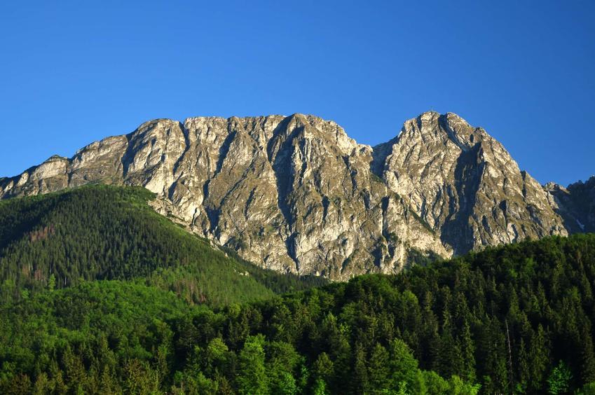 Widok na Giewont w Tatrach, a także Lasy Tatrzańskie krok po kroku, ich historia i ciekawostki