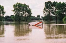 Śląsk pod wodą, kataklizm z 1997 roku. Jak wyglądała powódź tysiąclecia na Dolnym Śląsku?