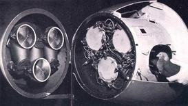 """Projekt """"Gołąb"""", czyli jak gołębie miały zostać pilotami kamikadze?"""
